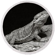 Speckled Iguana Lizard Round Beach Towel