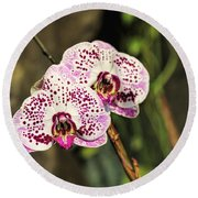 Speckled Orchids Round Beach Towel