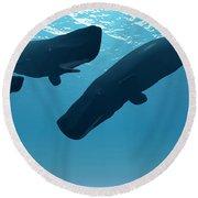 Sperm Whale Encounter Round Beach Towel