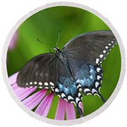 Spice Of Life Butterfly Round Beach Towel