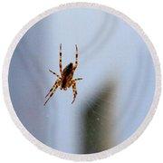 Spider Hello Panorama Round Beach Towel