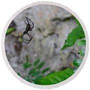 Spider In Thin Air Round Beach Towel