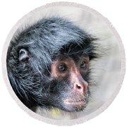 Spider Monkey Face Closeup Round Beach Towel