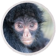 Spider Monkey Face Round Beach Towel