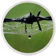 Spiderweb On Fencing Round Beach Towel