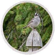 Spiffy Sparrow Round Beach Towel