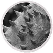 Spikey Thorny Tree Round Beach Towel