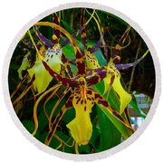 Spindly Orchid Round Beach Towel