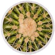 Spiny Cactus Needles Round Beach Towel