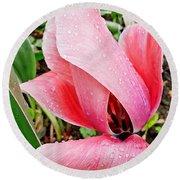 Spiral Pink Tulips Round Beach Towel