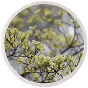 Spirit Of The Dogwood Round Beach Towel