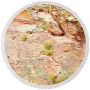 Splash Of Color In Valley Of Fire's Wash 3 Round Beach Towel