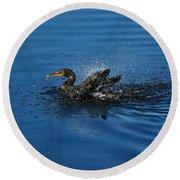 Splashing Cormorant Round Beach Towel