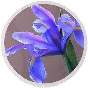 Splendid Iris Round Beach Towel