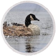 Splish Splash - Canada Goose Round Beach Towel
