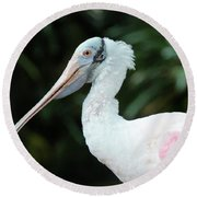 Spoonbill Profile Round Beach Towel