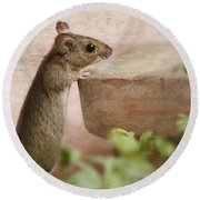 Sports Mouse Round Beach Towel