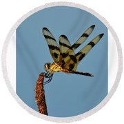 Spotted Hunter Round Beach Towel