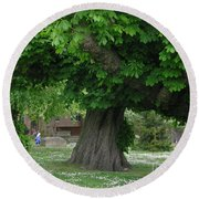Spreading Chestnut Tree Round Beach Towel