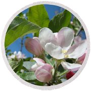 Spring Apple Blossoms Pink White Apple Trees Baslee Troutman Round Beach Towel
