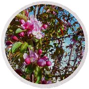 Spring Apple Blossoms- Spring Flowers Round Beach Towel