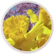 Spring Art Prints Yellow Daffodils Flowers Pink Blossoms Baslee Troutman Round Beach Towel