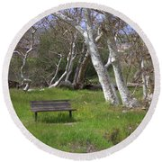 Spring Bench In Sycamore Grove Park Round Beach Towel