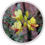 Spring Blooms Yellow Red 052814a Round Beach Towel