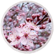 Spring Blossoms Art  Pink Tree Blossom Baslee Troutman Round Beach Towel