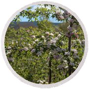 Spring Blossoms Day Round Beach Towel