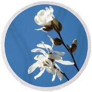 Spring Blue Sky Floral Art Print White Magnolia Tree Baslee Troutman Round Beach Towel