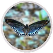 White Admiral Or Red-spotted Purple Round Beach Towel