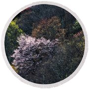 Spring Colors On The Parkway Round Beach Towel
