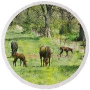 Spring Colts Round Beach Towel