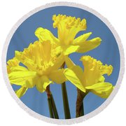 Spring Daffodil Flowers Art Prints Canvas Framed Baslee Troutman Round Beach Towel