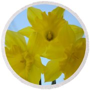Spring Daffodils 2 Flowers Art Prints Gifts Blue Sky Round Beach Towel