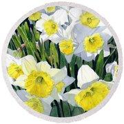 Spring- Daffodils Round Beach Towel