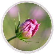 Spring Flower Savannah, Ga Round Beach Towel