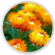 Spring Flowers In The Afternoon Round Beach Towel