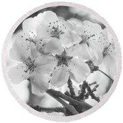 Spring Flowers - White Round Beach Towel