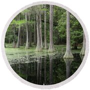 Spring Green In Cypress Swamp Round Beach Towel