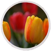 Spring In Colors Round Beach Towel
