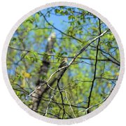 Spring In The Deep Woods Round Beach Towel
