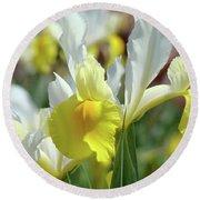 Spring Irises Flowers Art Prints Canvas Yellow White Iris Flowers Round Beach Towel