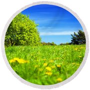 Spring Meadow With Green Grass Round Beach Towel