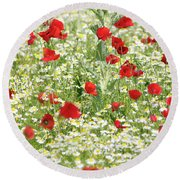Spring Meadow With Poppy And Chamomile Flowers Round Beach Towel