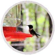 Spring Migration Hummingbird Round Beach Towel