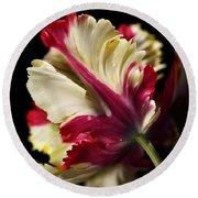 Spring Parrot Tulip Round Beach Towel