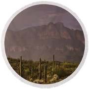 Spring Rain In The Sonoran  Round Beach Towel