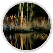 Spring Reflections Round Beach Towel